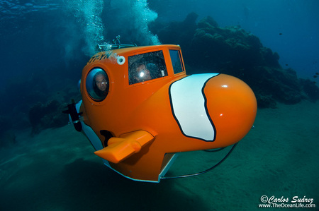 Personal Submersible - Canary Islands ResortSub