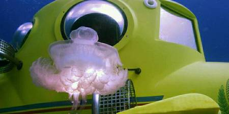 Personal Submersible - ResortSub - Great Barrier Reef Submarines